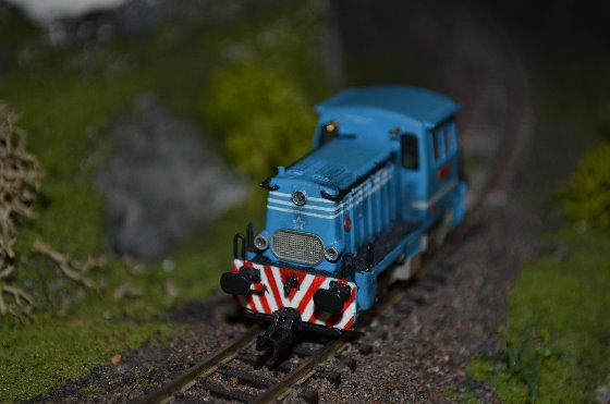 DSC_7704